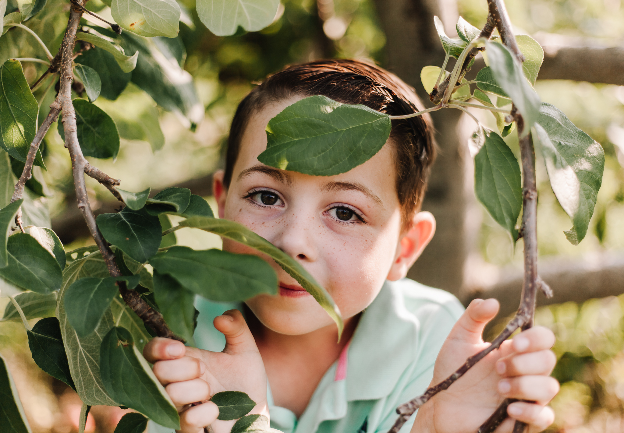 maine-lifestyle-portrait-photographer-mini-session-son-freckles-apple-orchard-fall-mini-session-2018.jpg