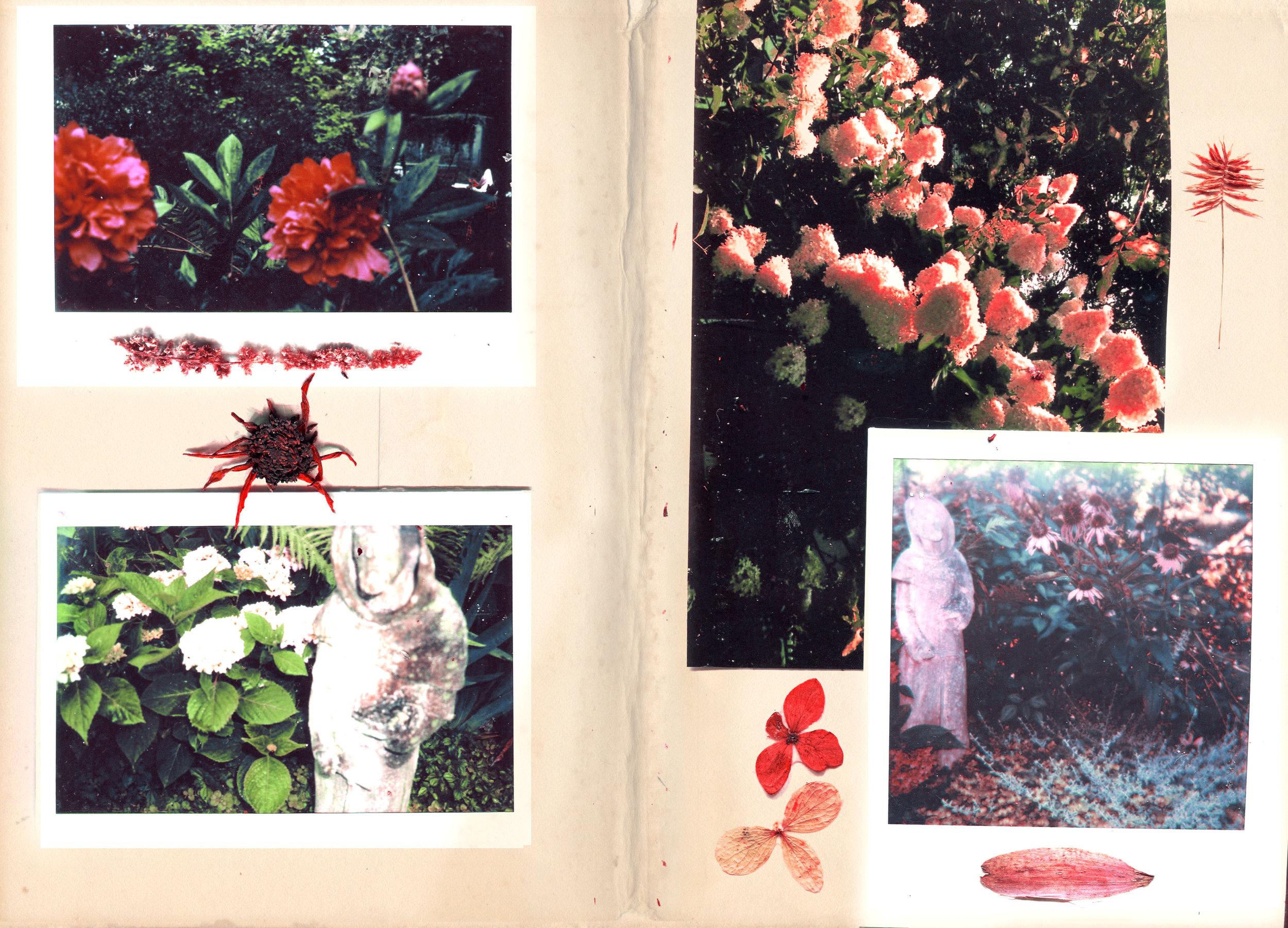 page5BB.jpg