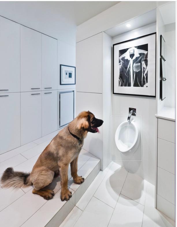 via : http://www.houzz.com/photos/2462599/Redeveloper-Apartment-modern-bathroom-ottawa