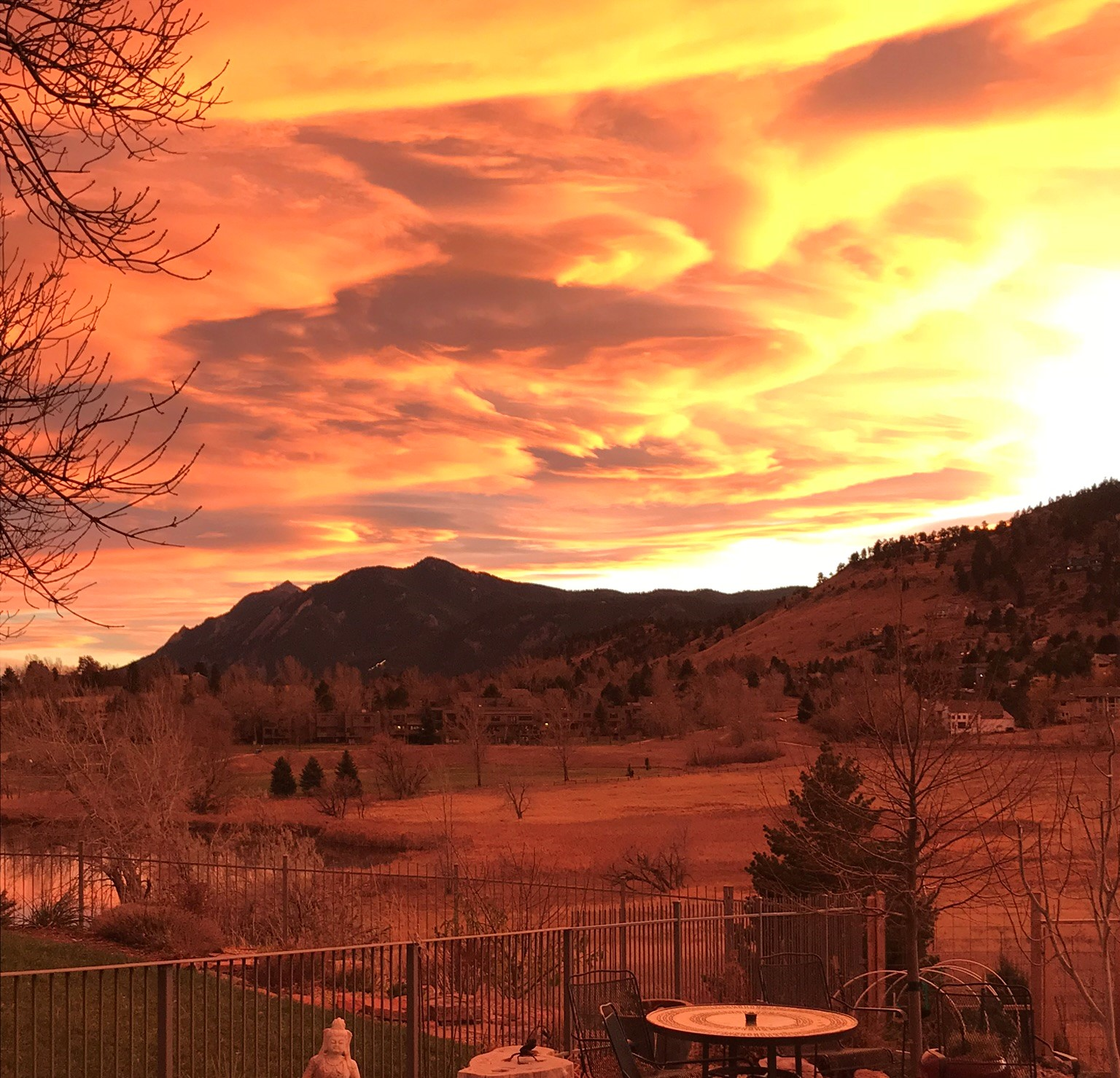 Barbee's backyard at sunset in Boulder, Colorado.