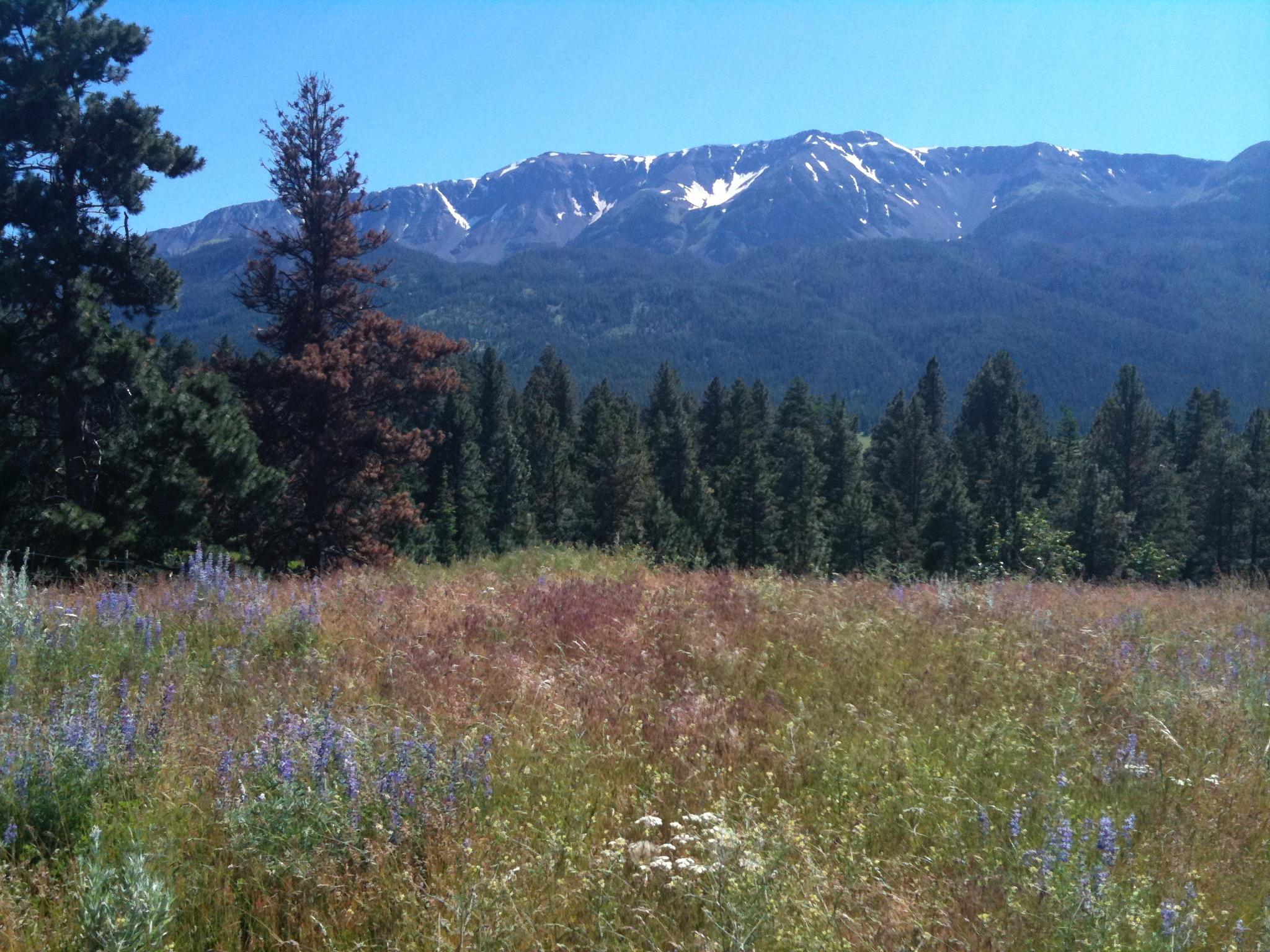 Wallowa Mountains where Joseph (Thunder Rising)'s band lived
