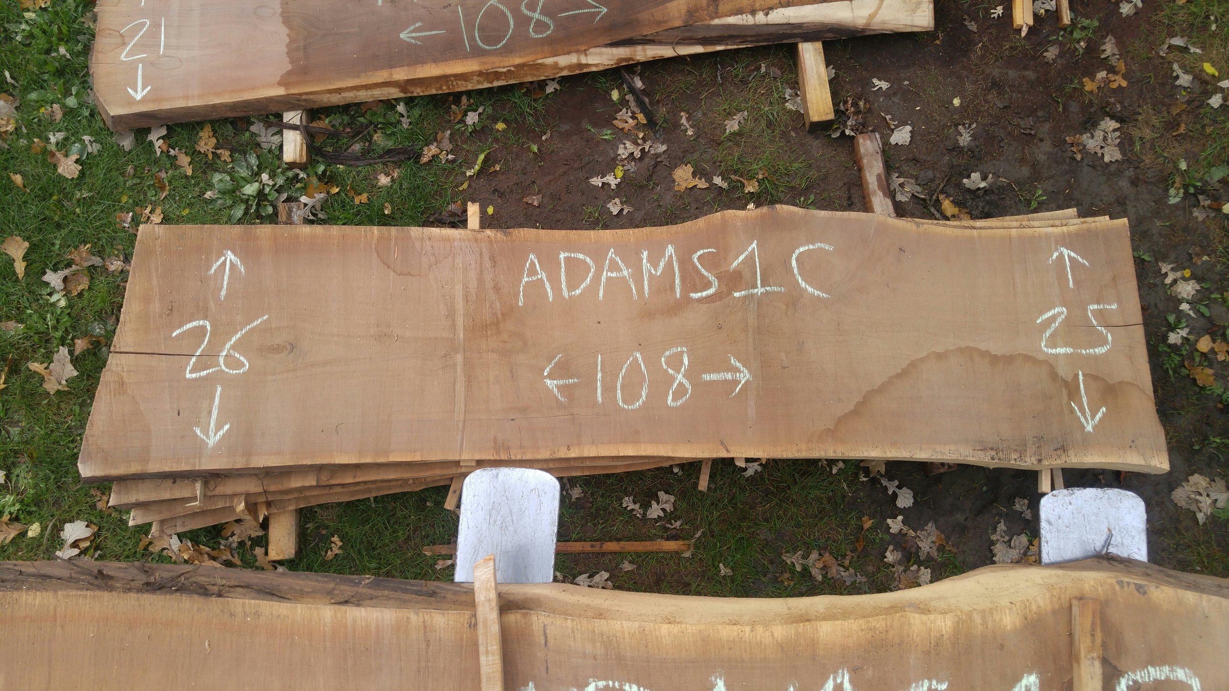 Adams1C.jpg