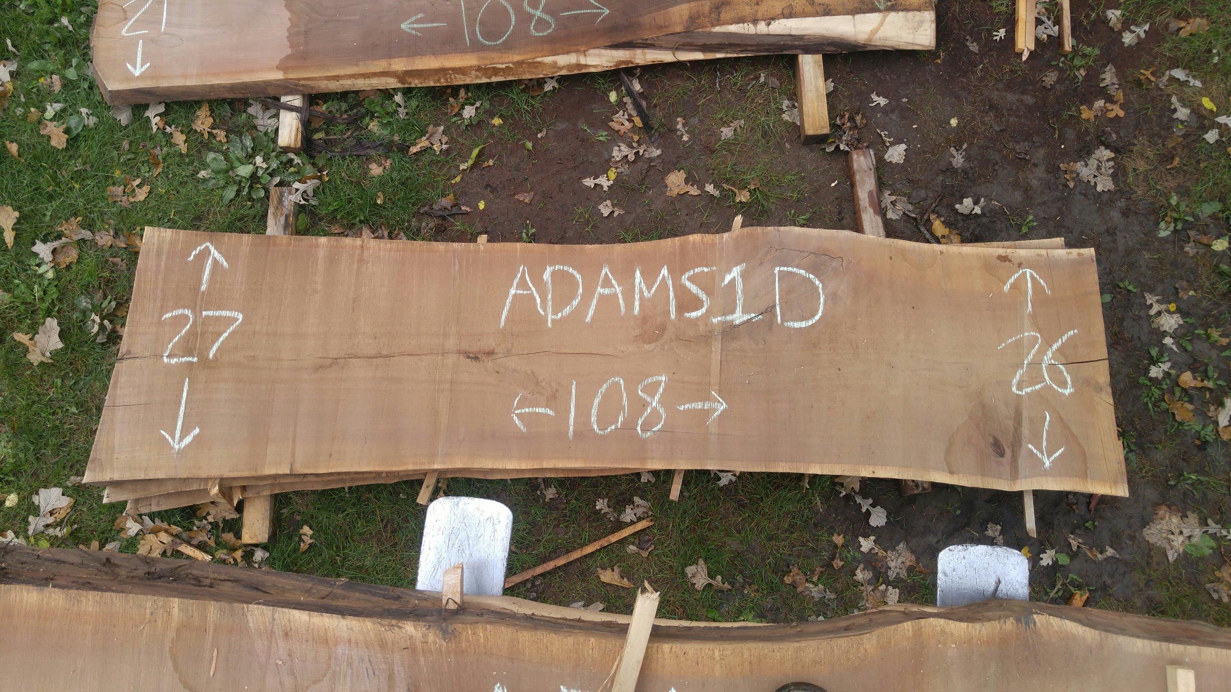 Adams1D.jpg