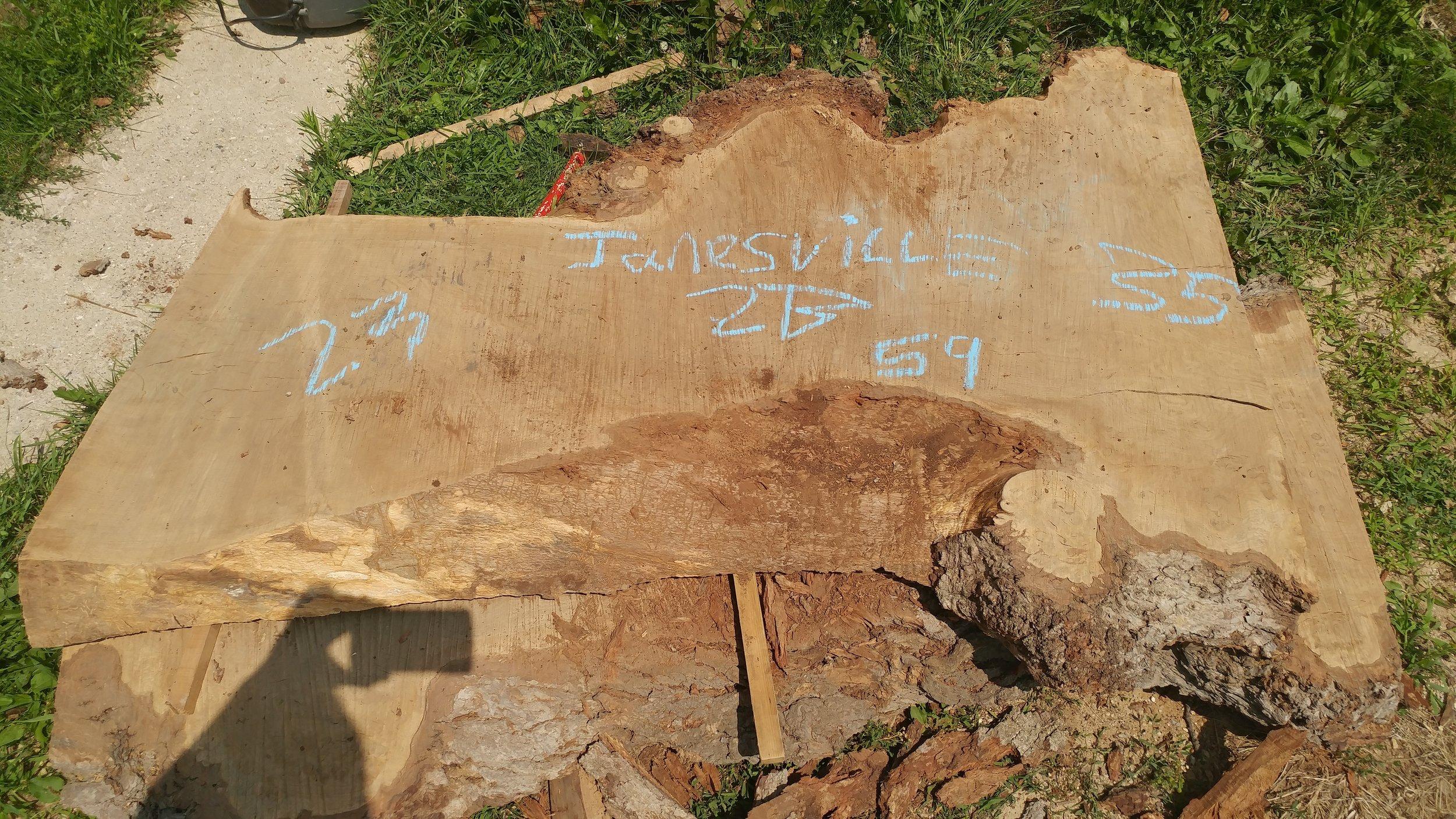 Janesville2B.jpg