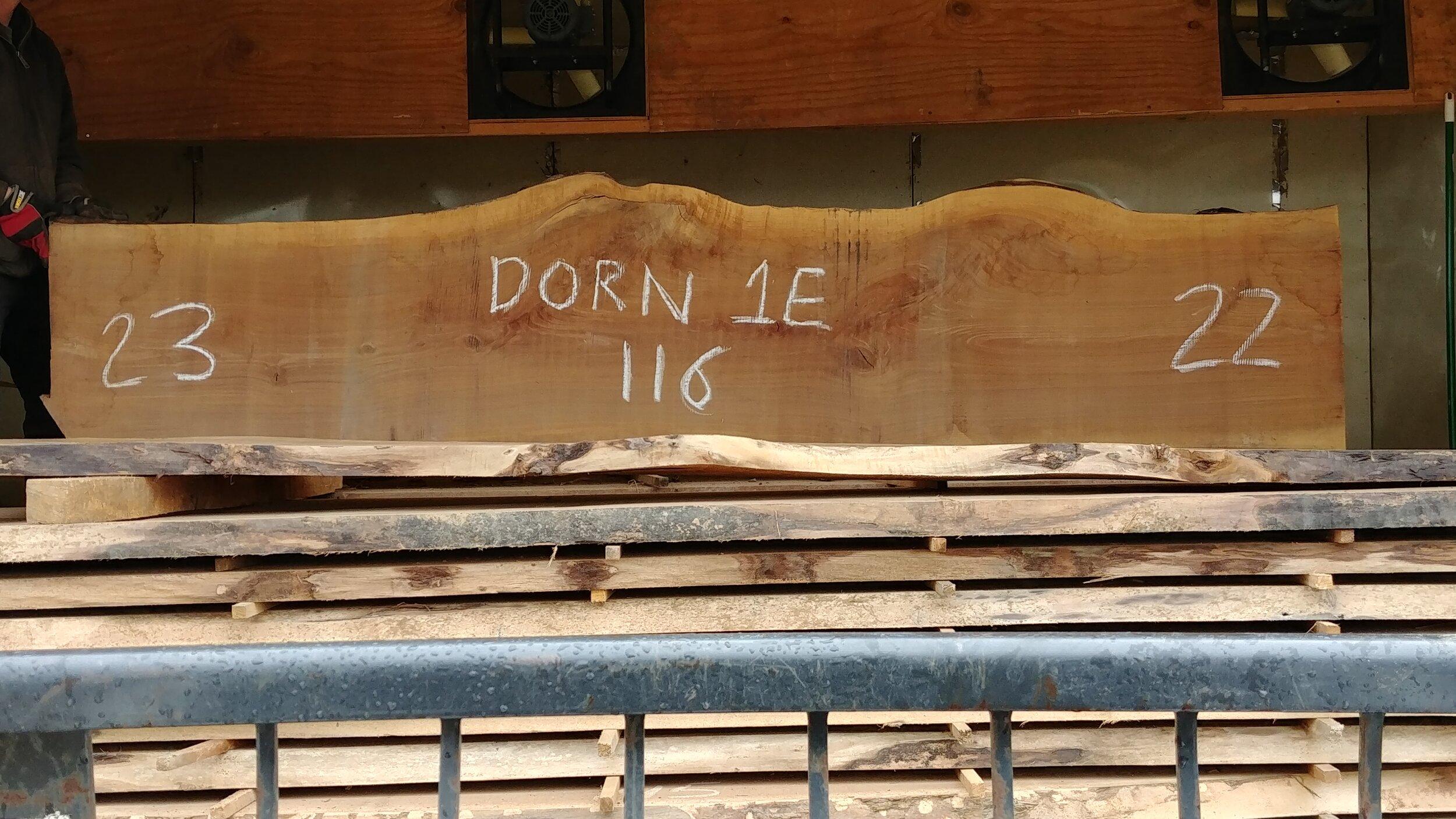 Dorn 1E.jpg