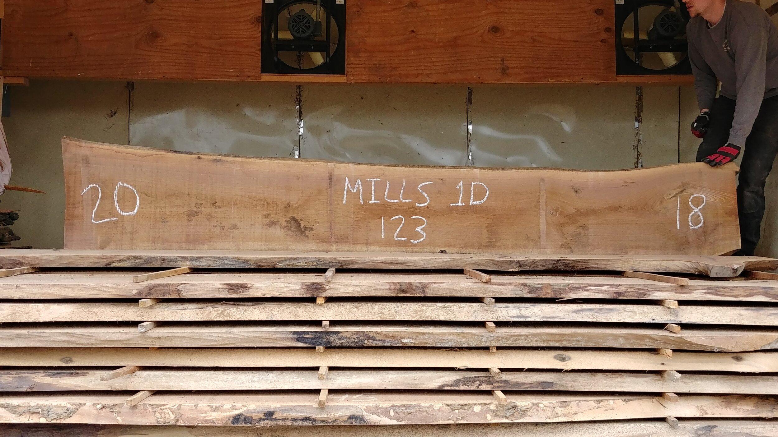 Mills 1D.jpg