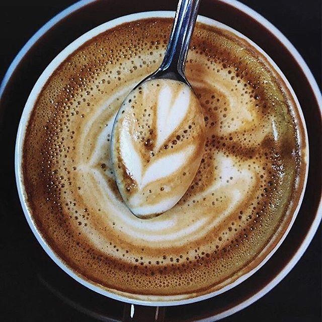 100 SE Salmon St, Portland || #coffeeshopinteriors • • • • • • #coffeeshop #coffee #design #vscocam #vsco #onthetable #justgoshoot #cafe #interiors #coffeeshopvibes #coffeeaddict #dailycortado #espresso #photooftheday #picoftheday #liveauthentic #manmakecoffee #coffeelover #coffeegram #coffeeoftheday #instacoffee #lifestyle #coffeelove #coffeetime #☕️ #nyc #brooklyn