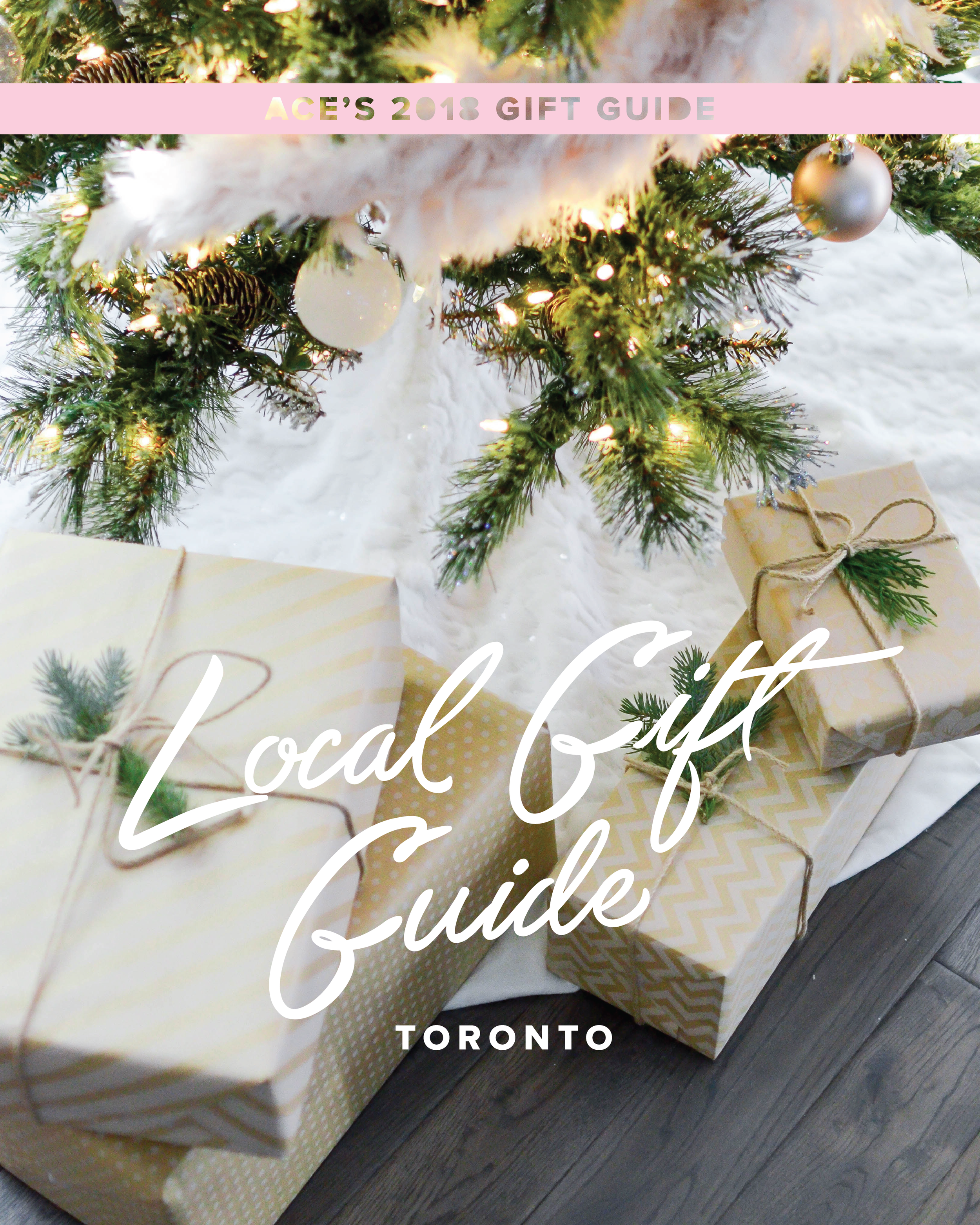 ACE_GiftGuides_2018-01.png