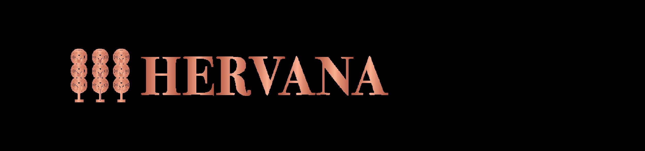 HervanaxAce-01.png