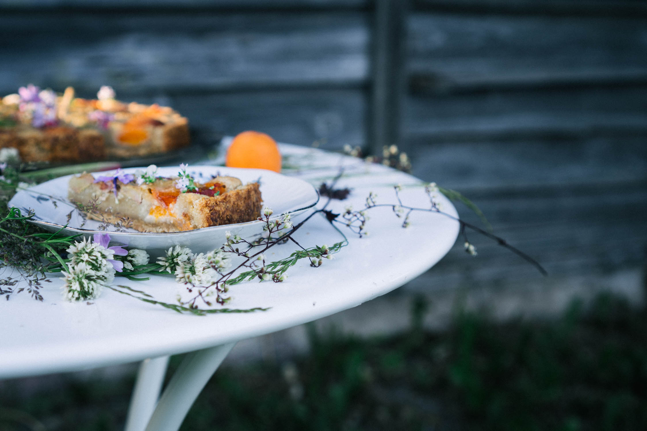 rhubarb_apricot_almond_tart-20.jpg