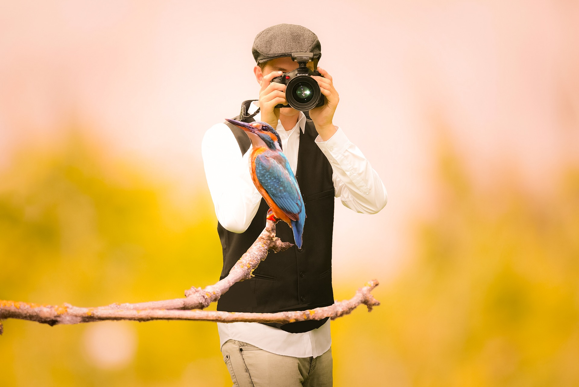 I thought I'd be like this guy. Observing a gigantic hummingbird - a discovery! Hurrah!