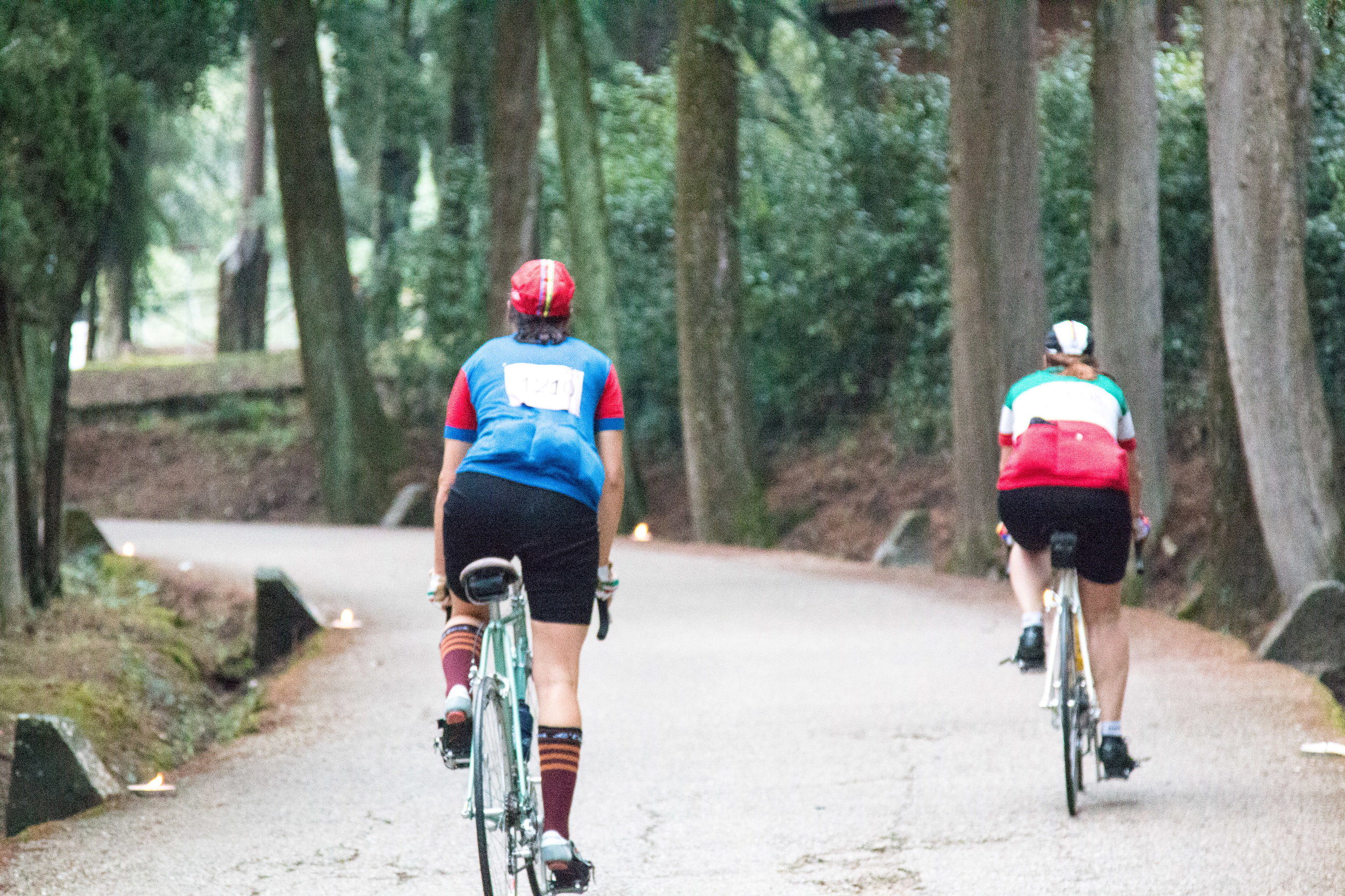 Into the strade bianche