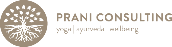 Prani Consulting Secondary Logo.png