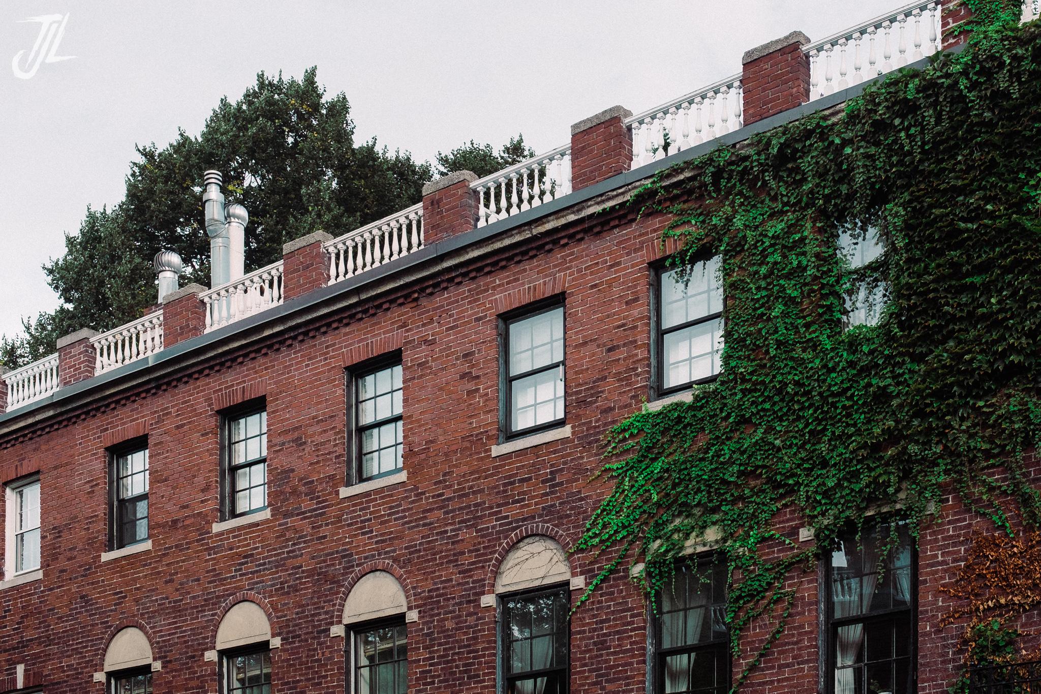 Ivy & Houses