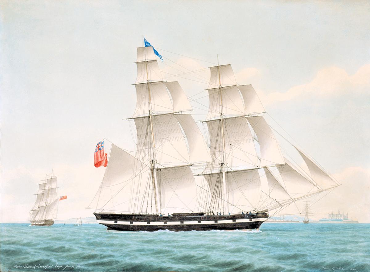 18747.jpg