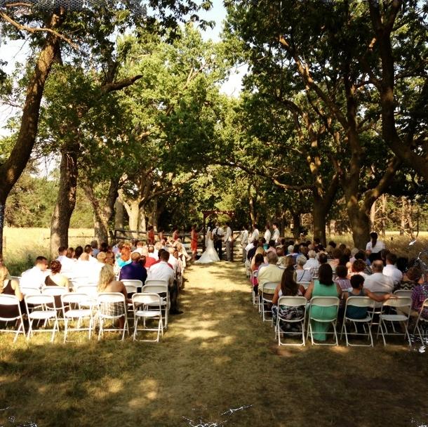 Tree lane wedding.JPG