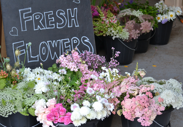 Contents of the buckets - Achillea, Roses, Clary Sage, Cynoglossum, larkspur, daisies, Achillea the pearl, Daucus Carota, Ammi Visnaga, Catananche Hypericum berries and Cornflowers