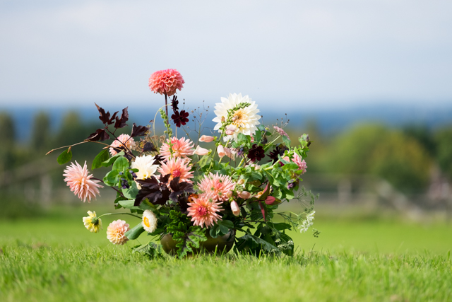 A low arrangement with the dark leaves of Physocarpus backing up the Digitalis and Dahlias