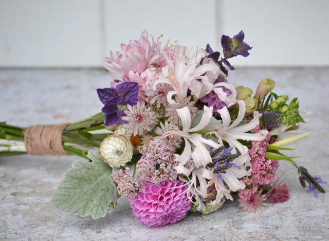 Bridal bouquet with Nerines, Dusty Miller, Helichrysum, Astrantia, Eryngium, Clary Sage, Digitalis, Dahlias, Achillea, Acidanthera, Chrysanthemum Allouise pink and Lavender multifida