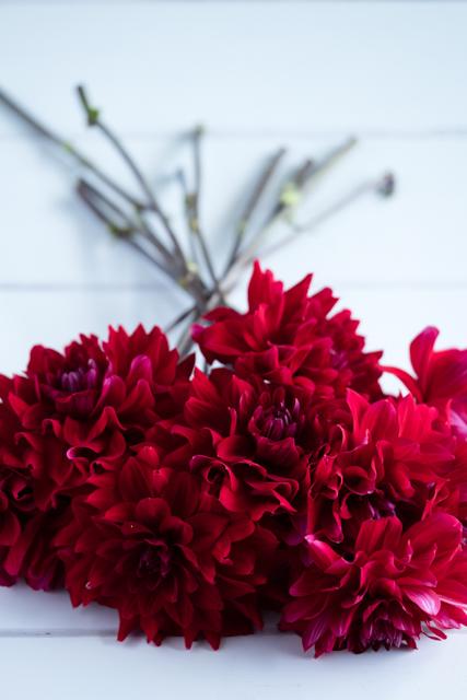 Bunch of flowers.jpg