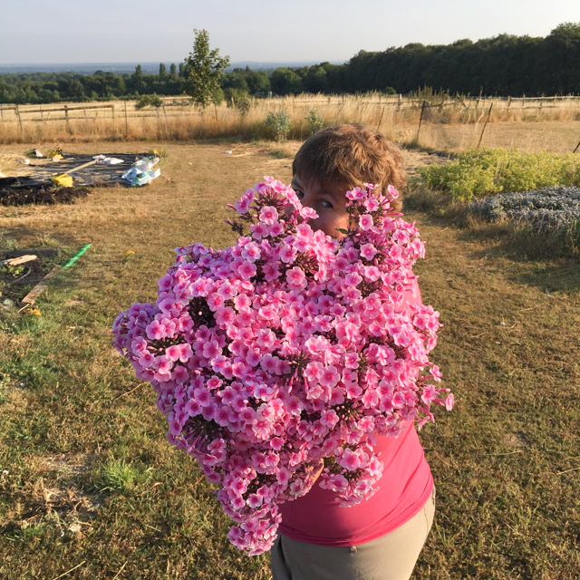 Seana catching me peeking out from behind an armful of phlox