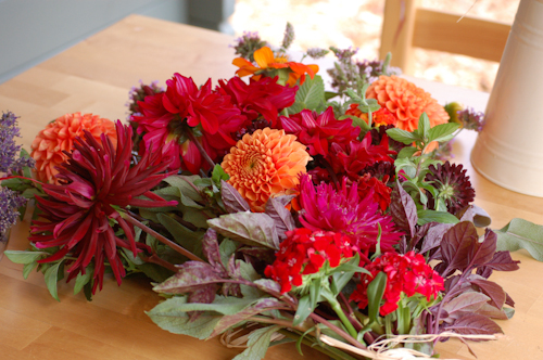 colourful farewell flowers.jpg