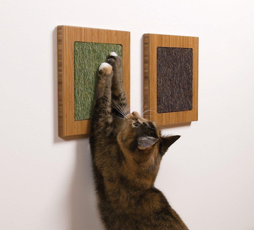 sq-cat-scratcher.jpg