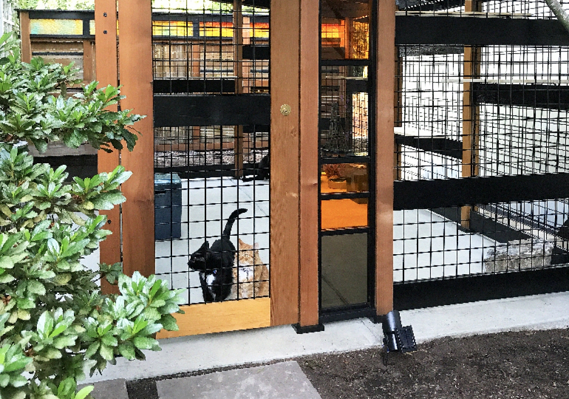 The Catio Tour was featured in the July 2019 issue of    Oregon Home