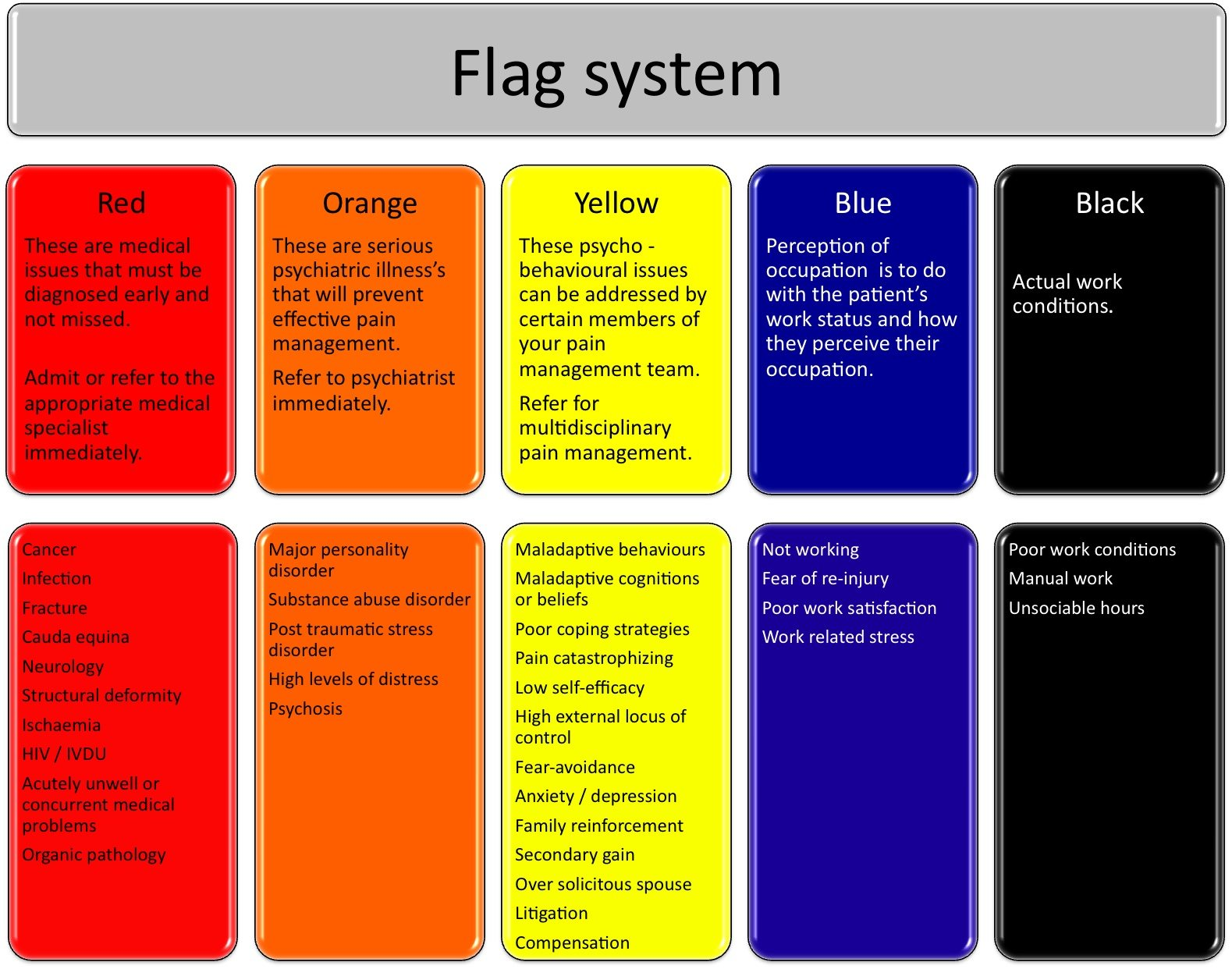 Figure 1. The flag system in evaluating chronic pain