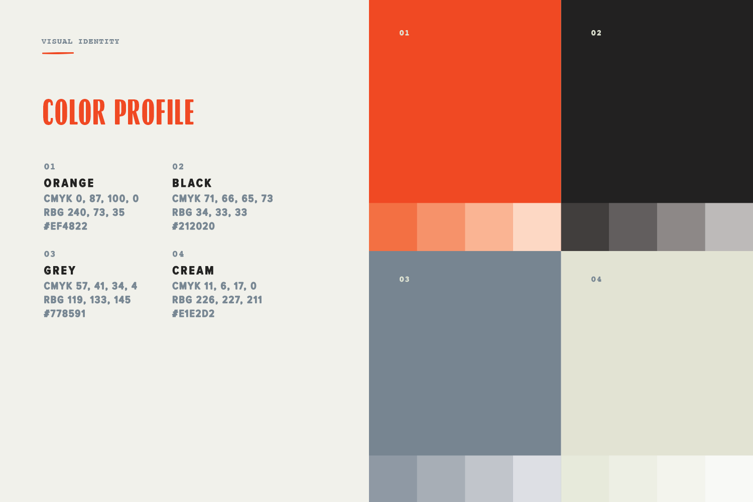 kosmosq_visual identity_color profile.png