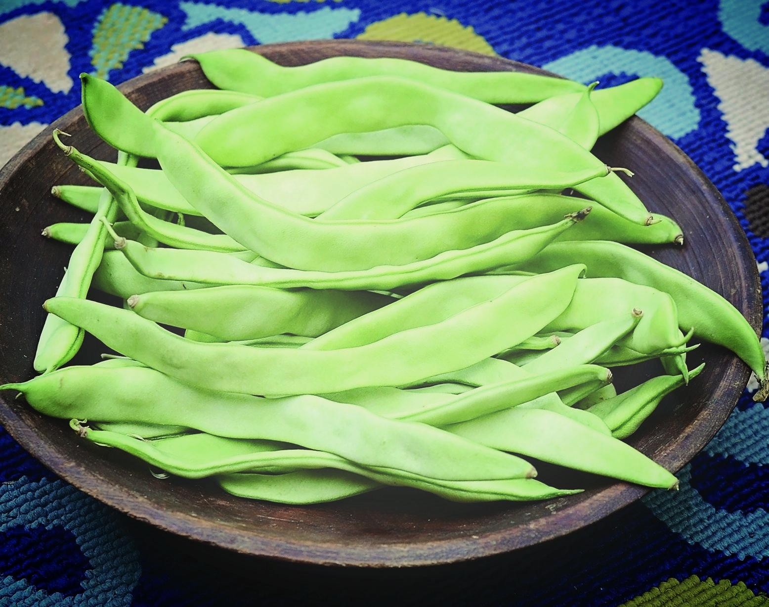 Limka Bean