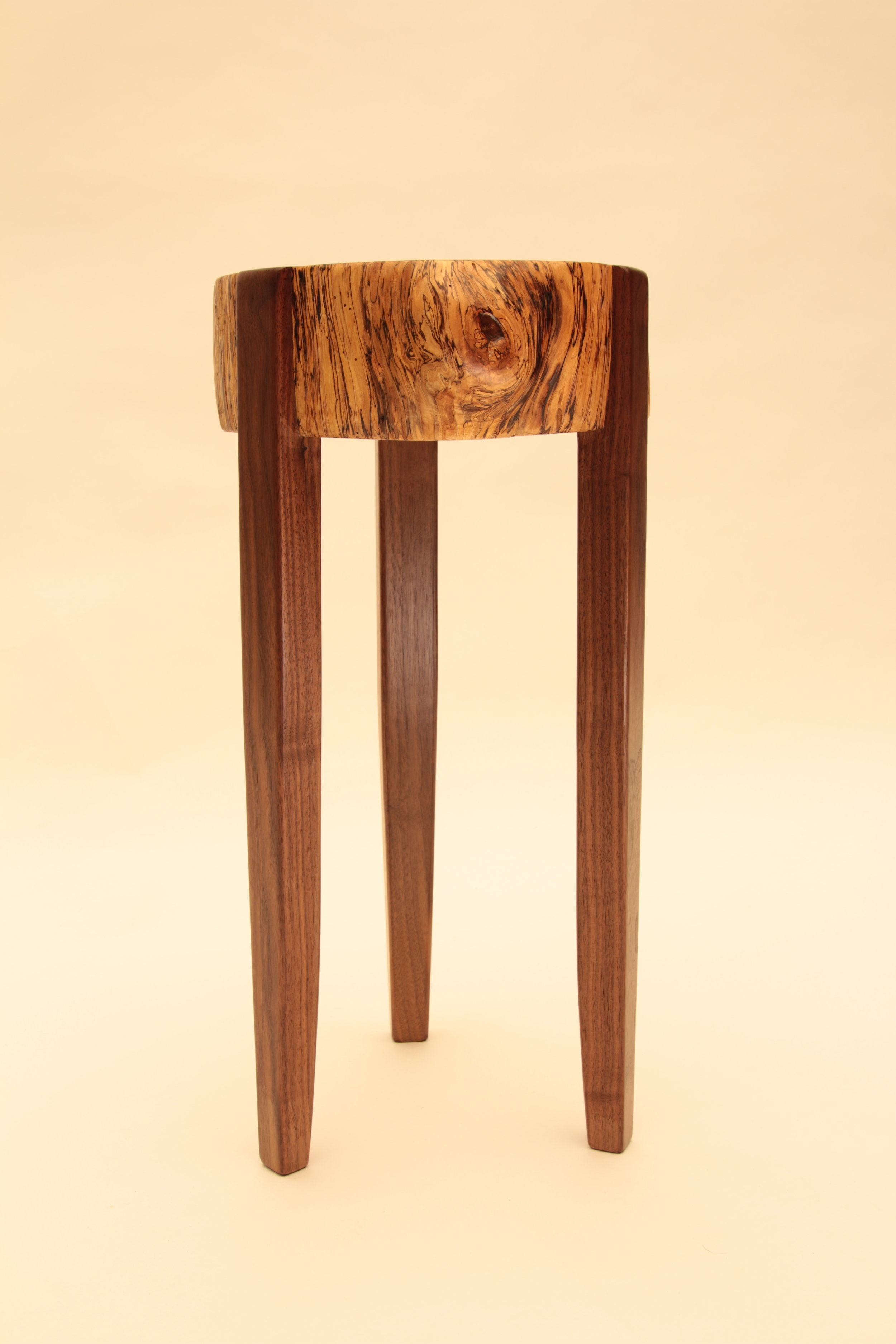 Tall Spalted Stump (side view)