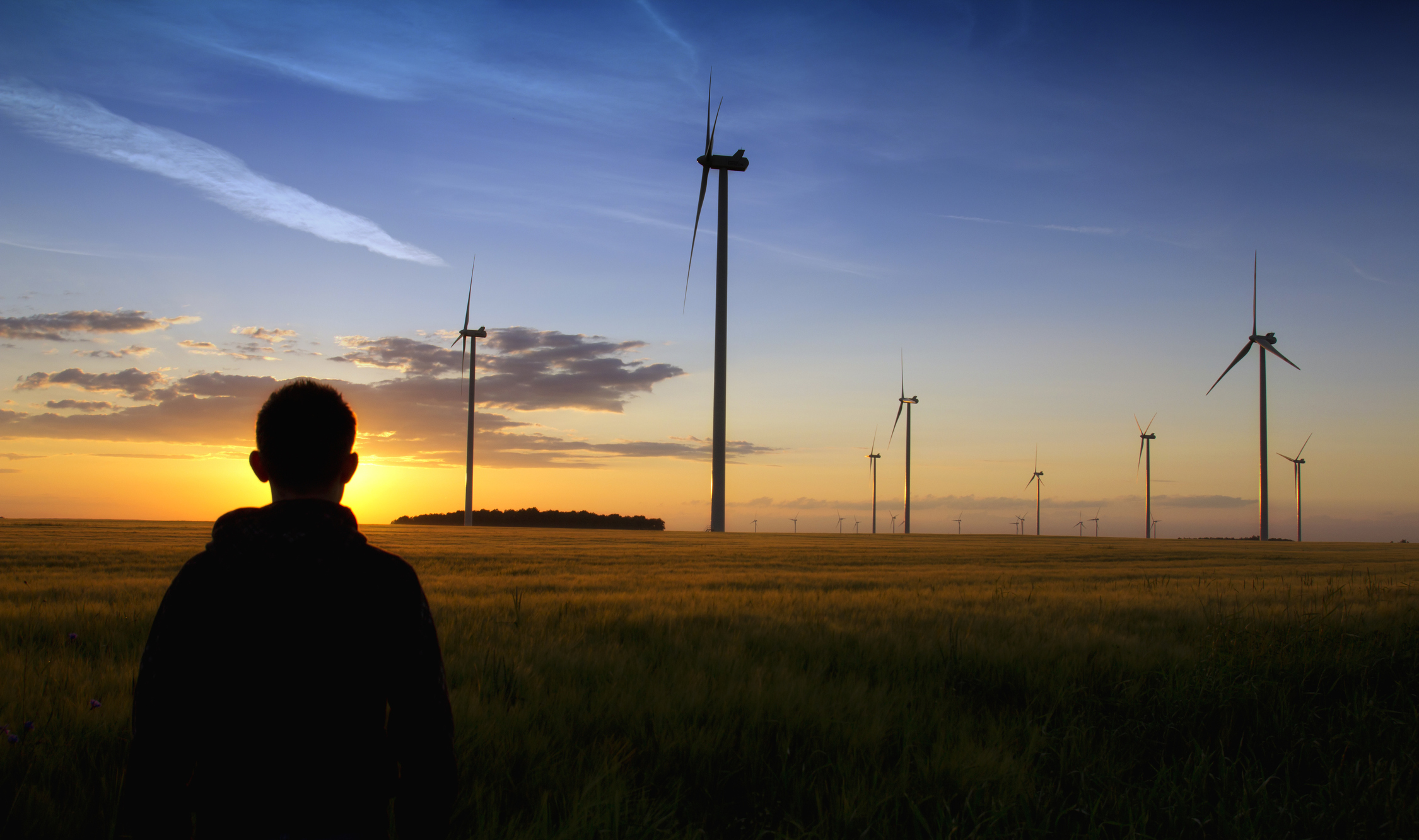 Person overlooking wind turbines for Mindsailing energy practice area