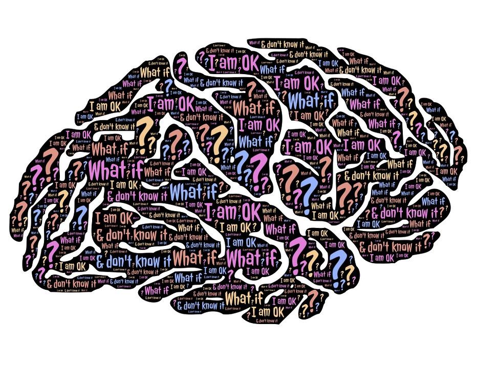 brain-859329_960_720.jpg