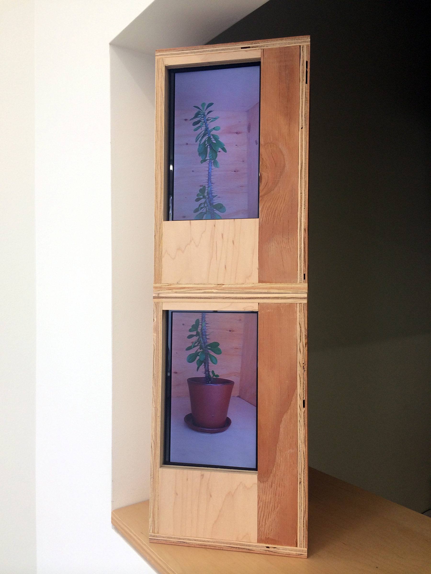 """JOSHUA PIEPER   Video Cactus , 2014, LCD monitors, dvds and wood housing, 25.5"""" x 6.25"""" x 7.75"""""""