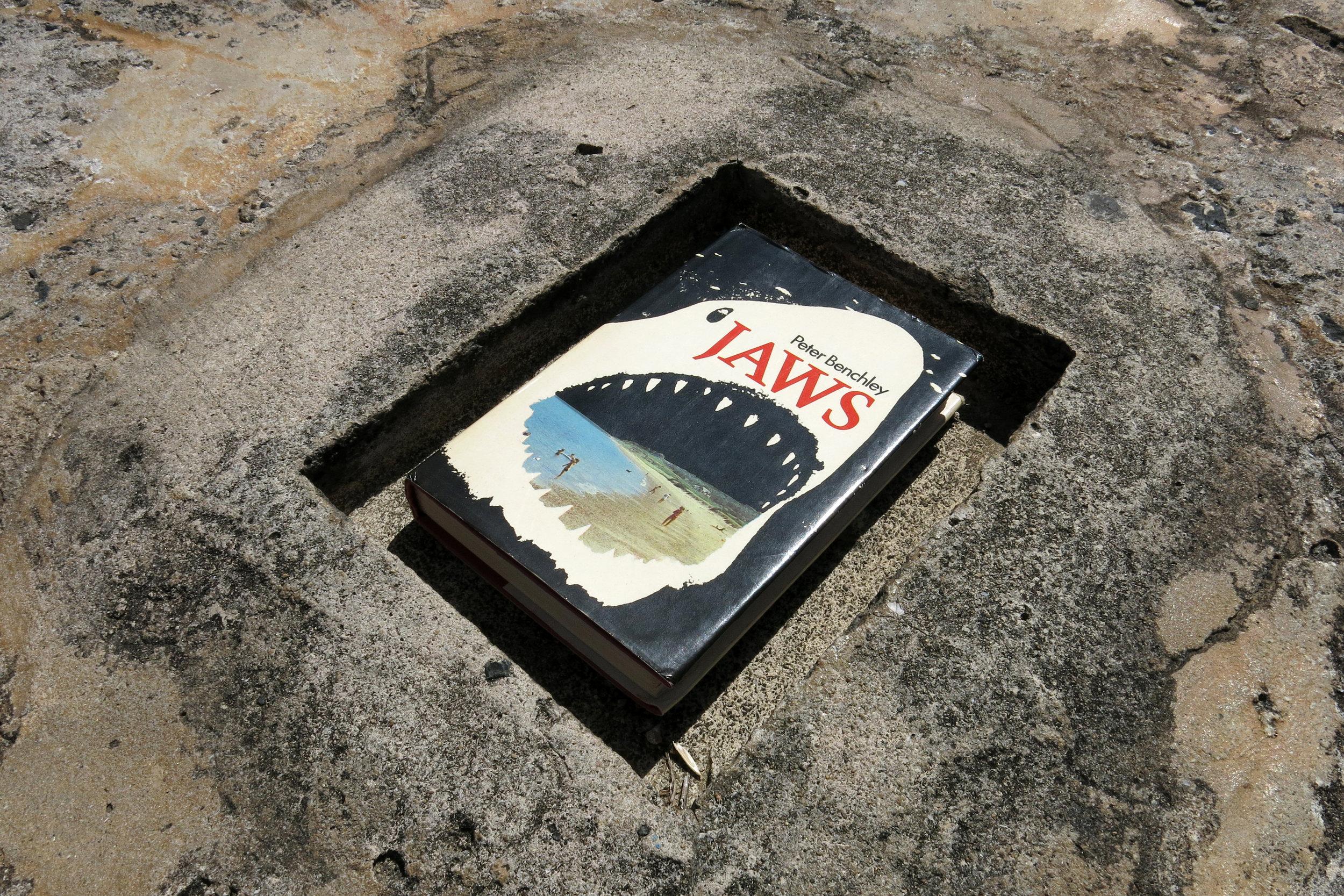 "PABLO GUARDIOLA   Sharks 2 , 2014, digital c-print, edition of 3 + 2AP, 10"" x 15"""