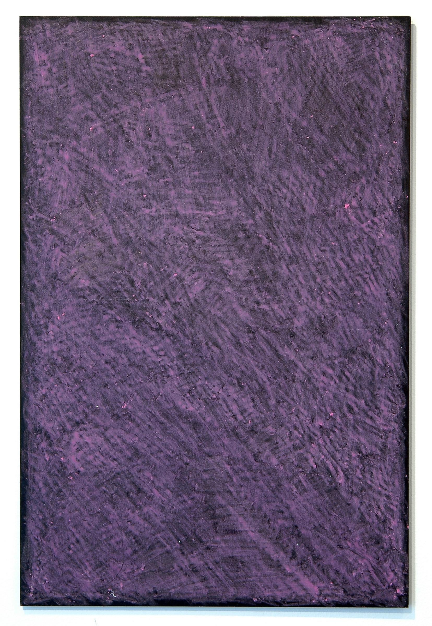 """ALICE CATTANEO   Silenzioso Rosa , 2013, plasitc, wax pastel, 18"""" x 12"""""""