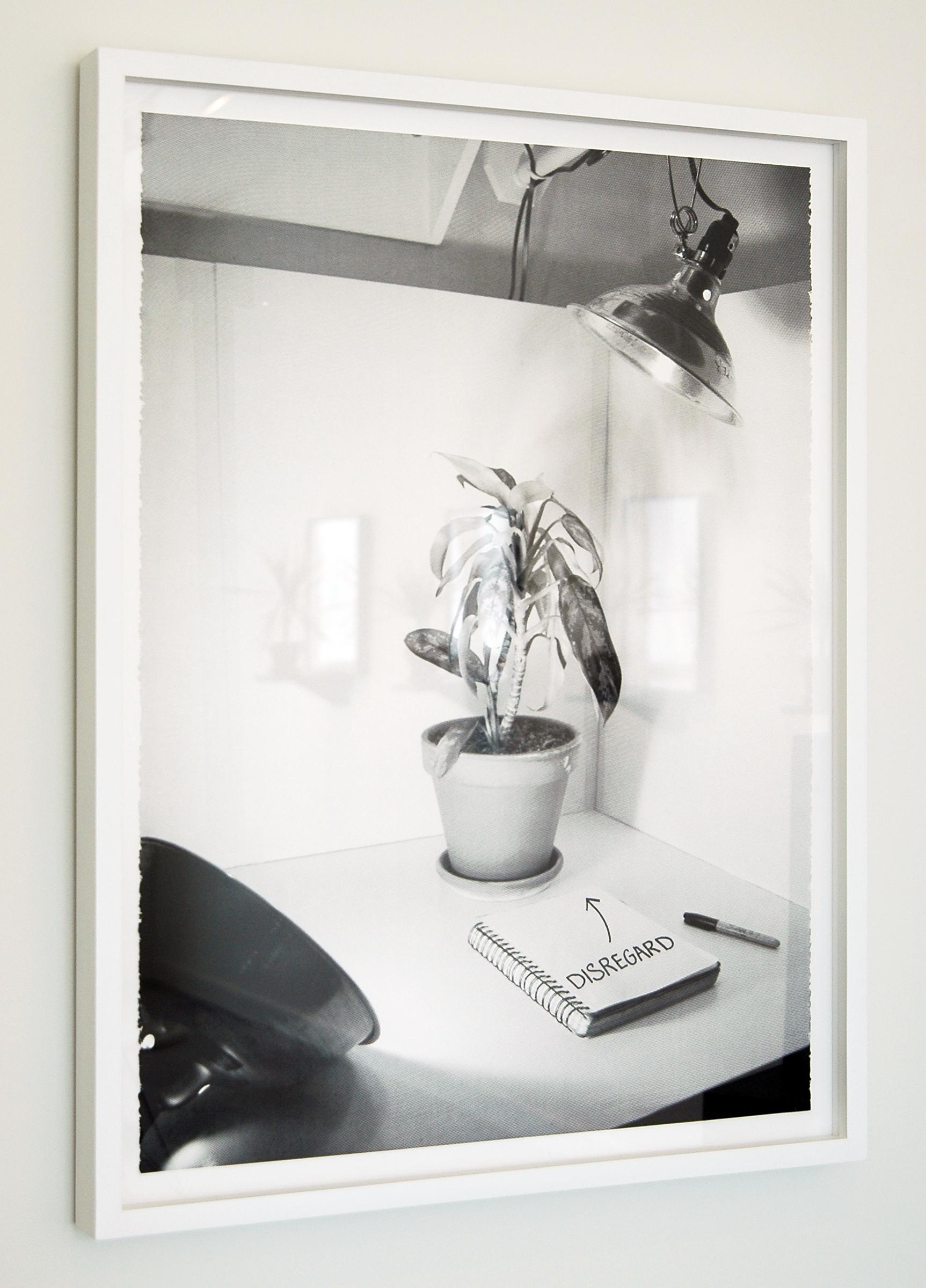 "JOSHUA PIEPER   Disregard , silkscreen and ink on paper, 33"" x 25"" (framed), edition of 10 + 1AP + 2PP, 2012"