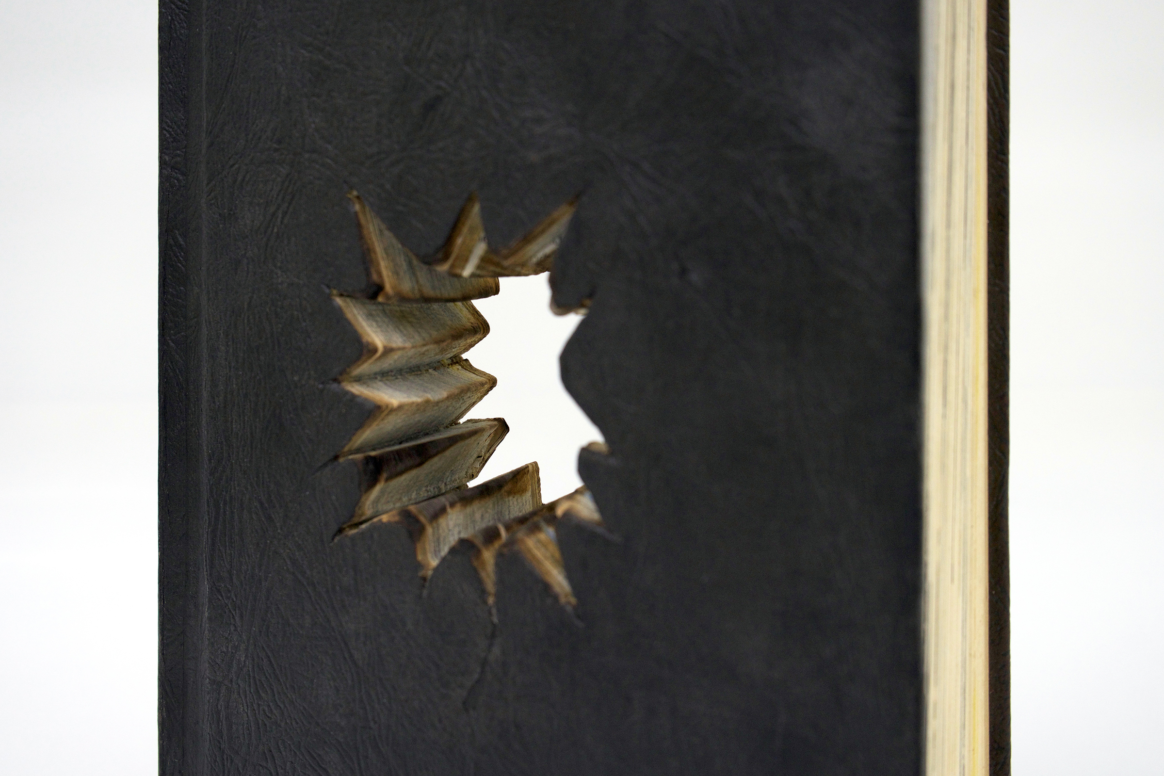 """BESSMA KHALAF (detail)  Untitled , 2019 Vintage encyclopedia (paper and binder's board) 9.25"""" x 6.5"""" x 1.5"""""""