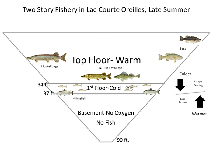 TWO-STORY, COLD-WATER FISHERY