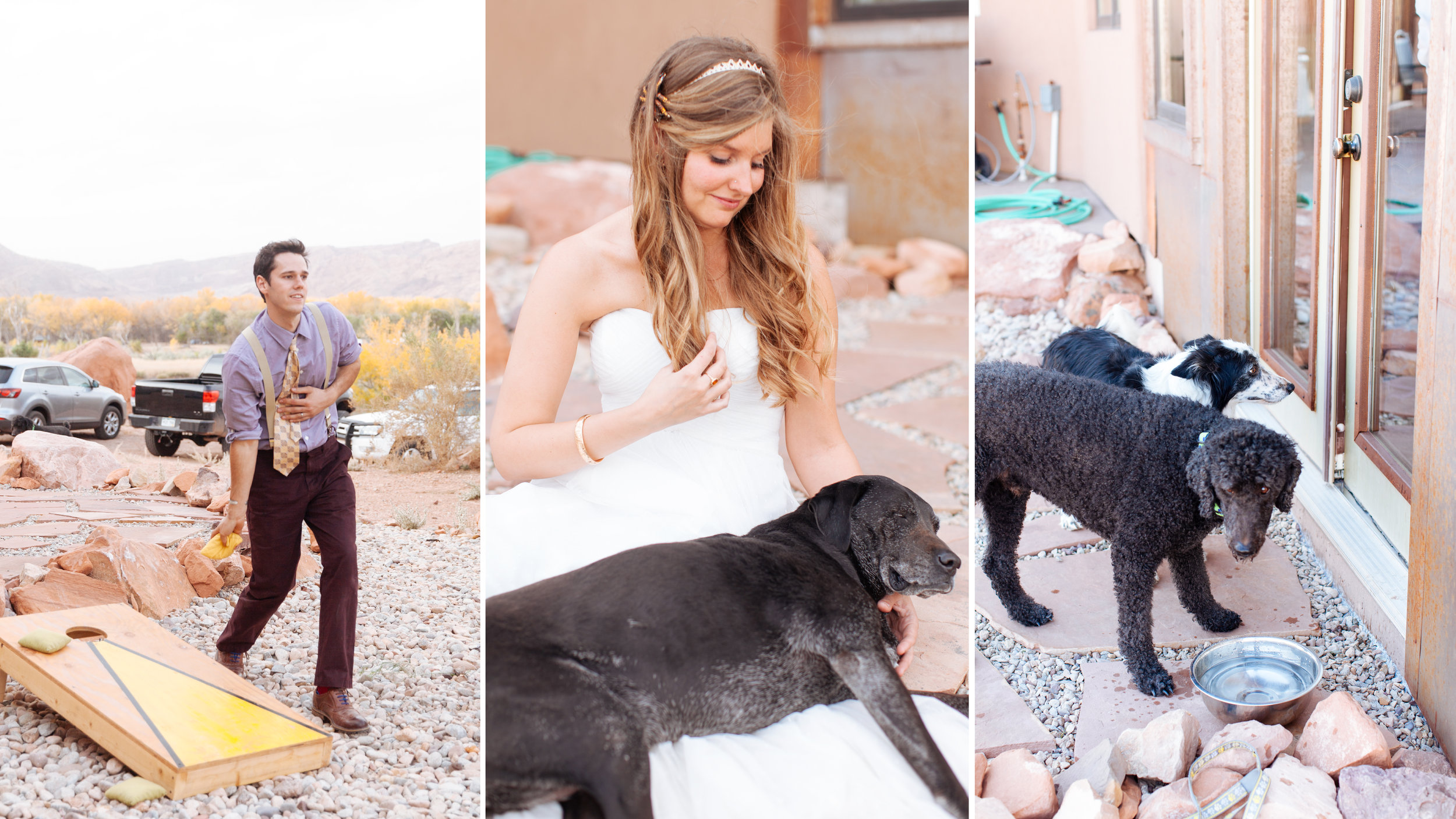 los angeles dog friendly wedding photography.jpg