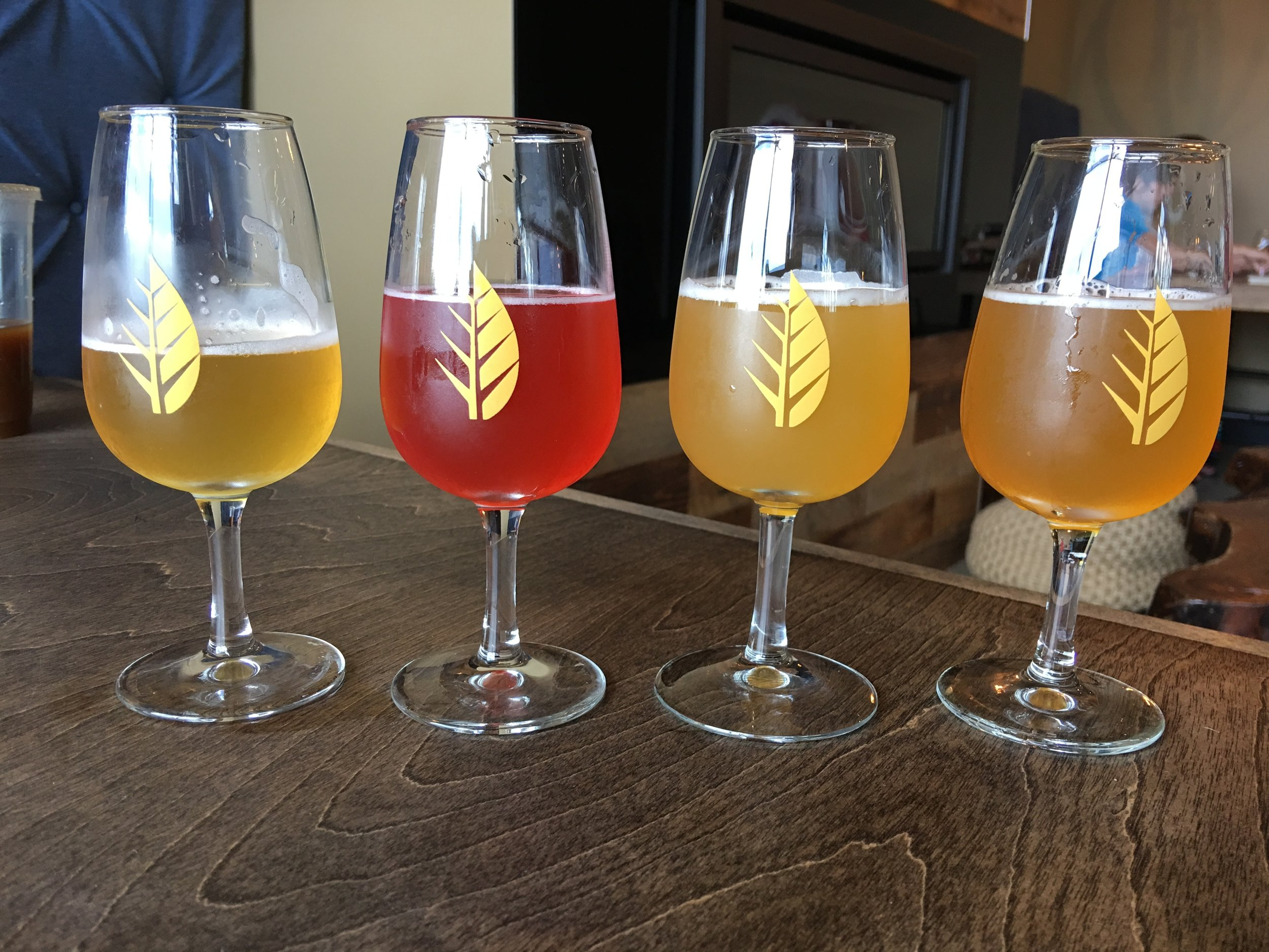 Tasters at Deciduous Brewing