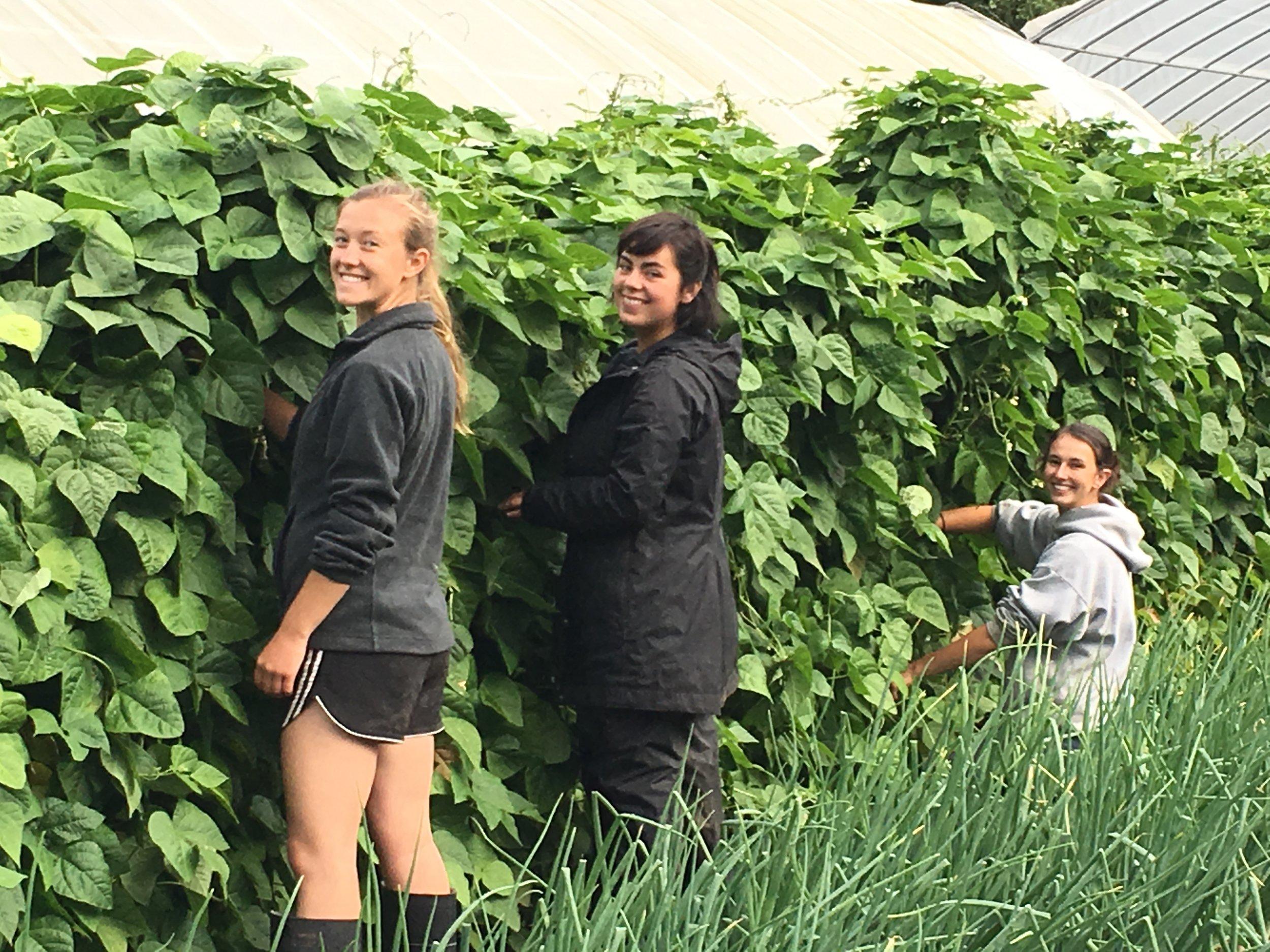 Heidi, Makayla and Becca