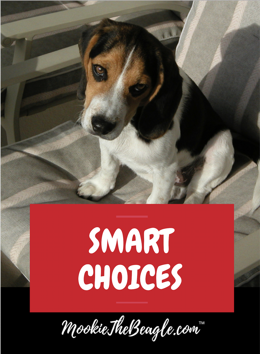 Mookie shares his Mookie Guide for making smarter choices in college, career and life!  -