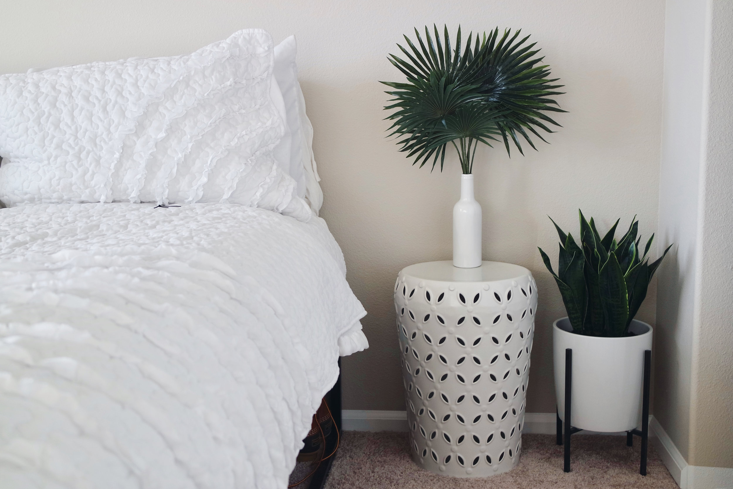 Palm leaves and glass bottle from Michaels. Snake plant & planter from Target.