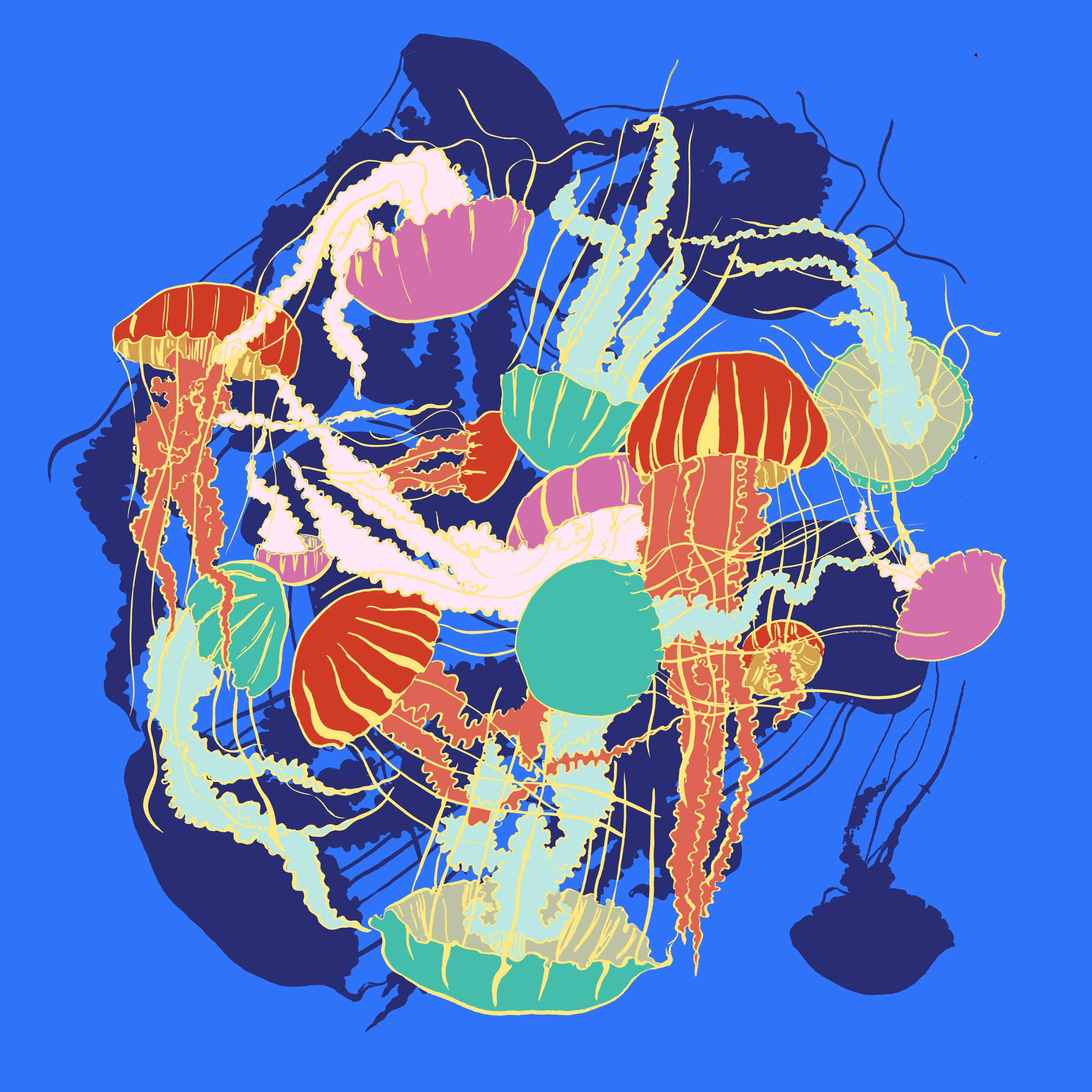A Smack of Jellies (2016)