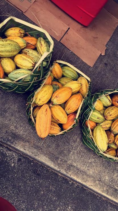 Papayas; Utulei-American Samoa