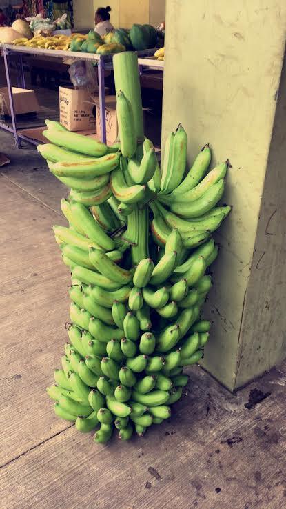 Bananas; Utulei-American Samoa