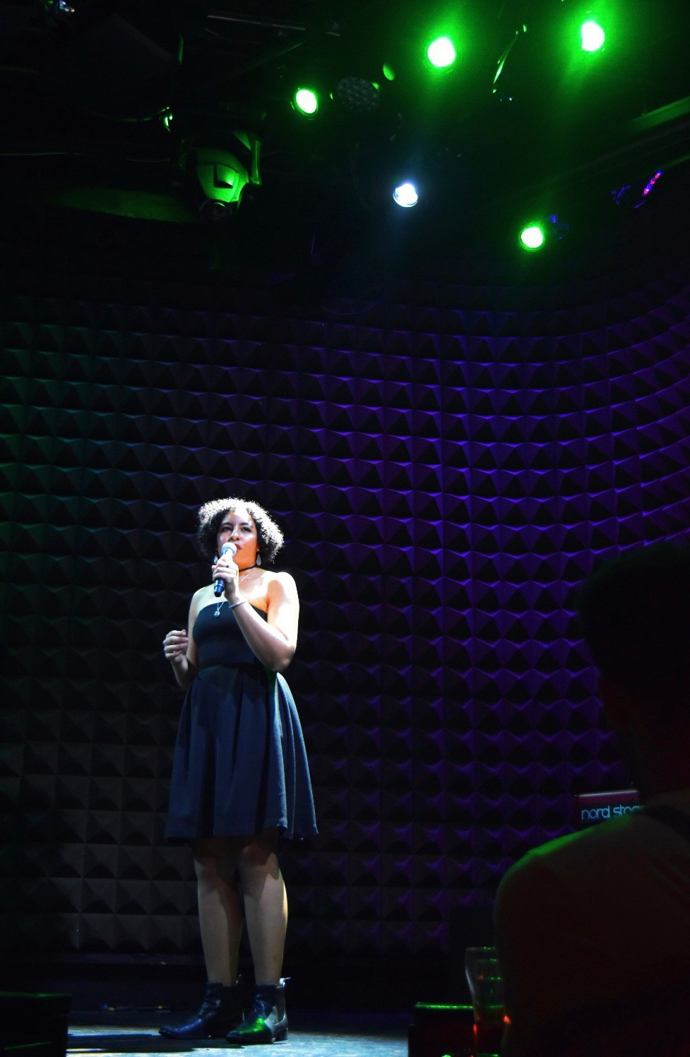 Photo by Sarah Lou Kiernan from #BARS at The Public Theater