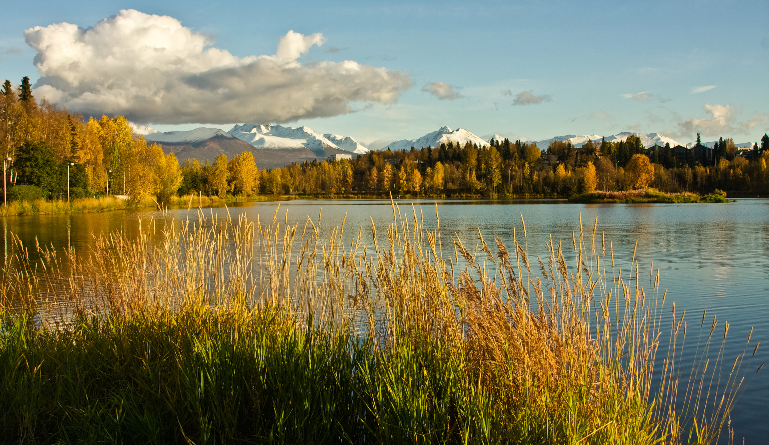 Westchester Lagoon in the fall